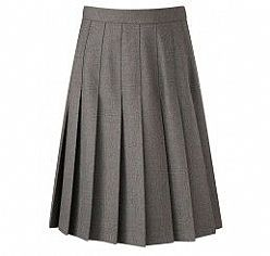 Ffynone House School Girls Pleated skirt