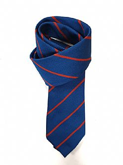 St Davids Catholic School Tie