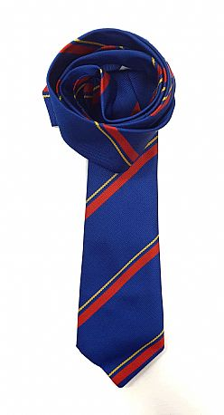 Olchfa School Boys & Girls Tie