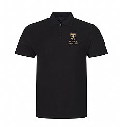 Olchfa Sixth Form Polo Shirt